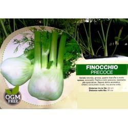 FINOCCHIO PRECOCE PACK